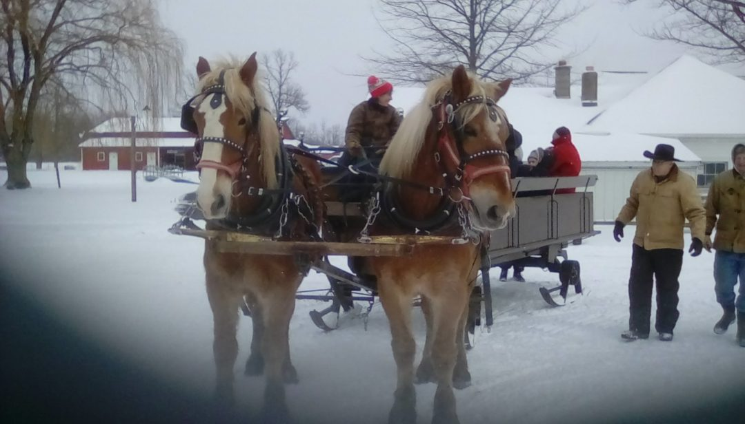 February Sleigh Ride