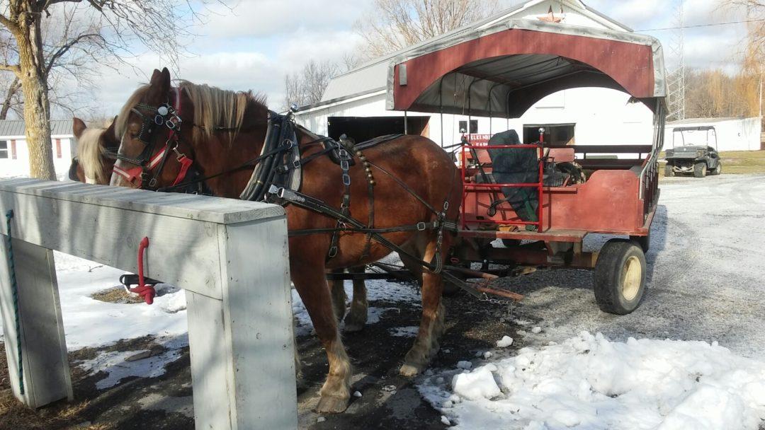 2019 Kelkenberg Farm Wagon Ride